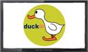 Duck TV live stream